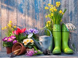 Kertszépítő nap április 21.